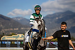 DEC 28: Gift Box with Joel Rosario wins the San Antonio Stakes at Santa Anita Park in Arcadia, California on December 28, 2019. Evers/Eclipse Sportswire/CSM