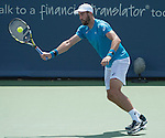 Steve Johnson (USA) defeated Jo-Wilfried Tsonga (FRA) 6-3, 7-6
