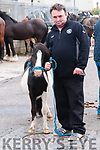Ballyduff Horse Fair : Pictured at Ballyduff horse fair on Sunday last was Tom Doyle and his Shetland pony from Listowel.