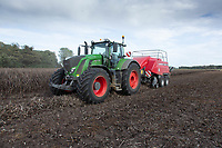 Baling bean straw<br /> ©Tim Scrivener Photographer 07850 303986<br />      ....Covering Agriculture In The UK....