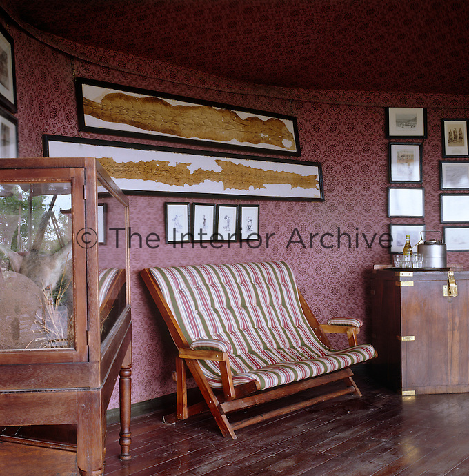 The curved wall of this tent is covered with framed engravings, old photographs and yellowing snake skins while a glass-fronted cabinet hosts a small stuffed animal