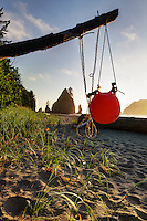 Orange fishing net float hanging from driftwood, Shi Shi Beach, Olympic National Park, Washington Coast, USA