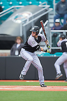 Robby Rinn (25) of the Bryant Bulldogs at bat against the Coastal Carolina Chanticleers at Springs Brooks Stadium on March 13, 2015 in Charlotte, North Carolina.  The Chanticleers defeated the Bulldogs 7-2.  (Brian Westerholt/Four Seam Images)