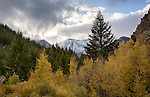 Idaho, Central, Custer County, Mackay.  Early season snow on the white Knob Mountains with autumn color in early October.