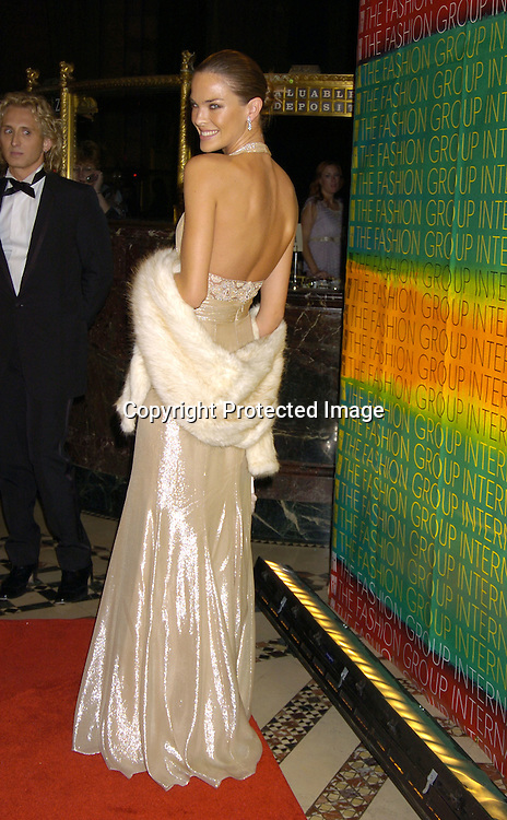 Leticia Birkheuer in David Meister dress..at the Fashion Group International's 21st Annual Night of ..Stars on October 28, 2004 at Cipriani 42nd Street in New York City. ..Photo by Robin Platzer, Twin Images