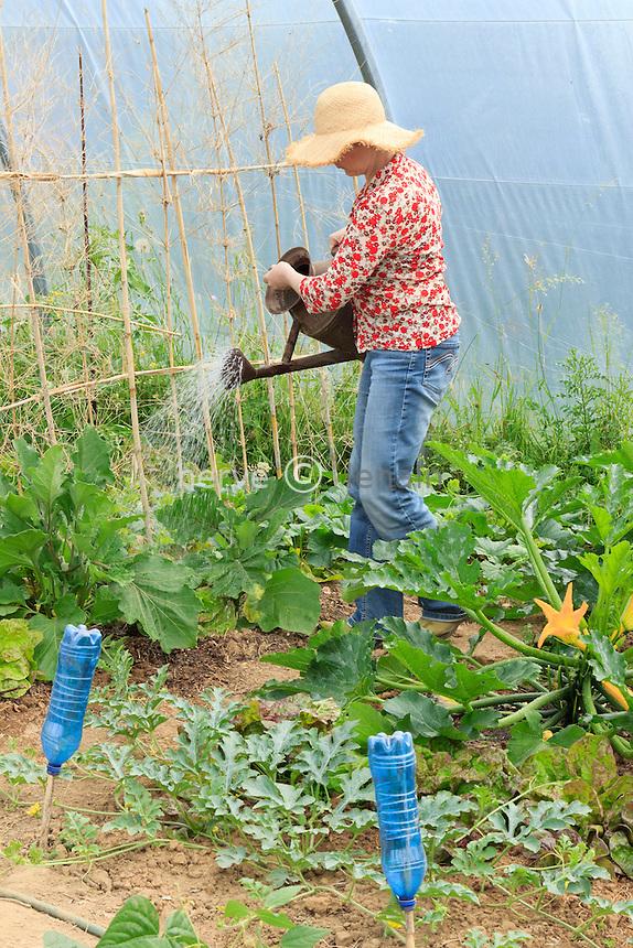 Arrosage dans un potager amateur sous tunnel (model & property release OK) // Watering in a kitchen garden under a hoophouse.