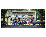 Kaitlyn Clair of the Carlisle Ridge Riders Horse performed in Senior Horse Reining and won a blue ribbon at the Warren County Fair.