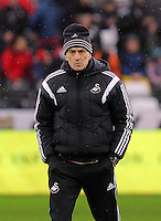 Swansea head coach Francesco Guidolin during the Barclays Premier League match between Swansea City and Crystal Palace at the Liberty Stadium, Swansea on February 06 2016