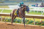 DEL MAR,CA-AUG 17: Higher Power,ridden by Flavien Prat,wins the Pacific Classic at Del Mar Race Track on August 17,2019 in Del Mar,California. Kaz Ishida/Eclipse Sportswire/CSM