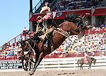 Ben Morrow Saddle Bronc riding at Cheyenne Frontier Days