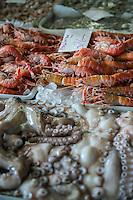 SAO PAULO, SP, 27 DE MARÇO DE 2013. OITAVA SANTA FEIRA DO PEIXE NA CEAGESP. Polvo e Lagostim a venda na oitava santa feira do peixe que acontece no Patio do Pescado da  Ceagesp.  Esta feira acontece antes das festividades da semana santa e os clientes podem comprar vários tipos de peixes com preço de atacado. A feira acontece ate o dia 28 de março a partir das 14 horas. FOTO ADRIANA SPACA/BRAZIL PHOTO PRESS