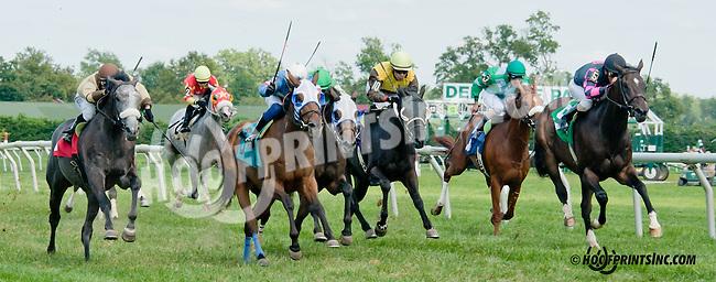 Take the Offer winning at Delaware Park on 8/24/2013