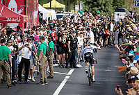 Daryl Impey (ZAF/Mitchelton-Scott) wins stage 9<br /> <br /> Stage 9: Saint-Étienne to Brioude (170km)<br /> 106th Tour de France 2019 (2.UWT)<br /> <br /> ©kramon