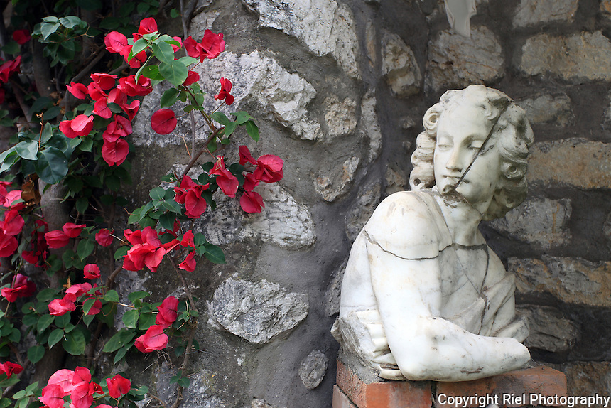 A broken statue bust sits pondering adjacent flowers on the island of Carpi, Itlay
