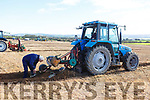 Eamon Flynn checking the plough for his daughter Martina at the Abbeydorney Ploughing on Sunday