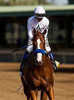 ARCADIA, CA - APRIL 07:  Mike Smith and Justify #6 after winning the Santa Anita Derby at Santa Anita Park on April 07, 2018 in Arcadia, California.(Photo by Alex Evers/Eclipse Sportswire/Getty Images)