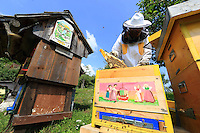 Slovenia, Lancovo, at the traditional apiary owned by Drago Pancur, 62 years old. Former cook in a luxury hotel, he began beekeeping around the age of fifty. He had the luck of inheriting the family apiary which had been abandoned for 30 years. This hundred-year-old apiary was built next to the family farm, itself built in 1720.///Slovénie, Lancovo, sur le rucher traditionnel de Drago Pancur, 62 ans. Ancien cuisinier dans un hôtel de luxe, il commence l'apiculture vers la cinquantaine. Il a la chance d'hériter du rucher familial à l'abandon depuis 30 ans. Ce rucher centenaire est construit à coté de la ferme de famille construite en 1720.