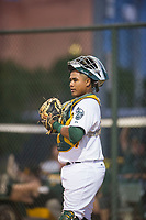 AZL Athletics catcher Santis Sanchez (44) on defense against the AZL Brewers on August 18, 2017 at Lew Wolff Training Complex in Mesa, Arizona. AZL Brewers defeated the AZL Athletics 6-4. (Zachary Lucy/Four Seam Images)