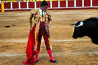 A Spanish bullfighter (matador) performs close to a bull at the bullring in Fuengirola, Spain, 28 April 2007.