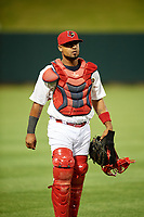 Memphis Redbirds catcher Alberto Rosario (7) during a game against the Round Rock Express on April 28, 2017 at AutoZone Park in Memphis, Tennessee.  Memphis defeated Round Rock 9-1.  (Mike Janes/Four Seam Images)