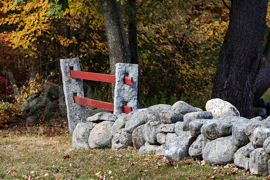 Rustic stone wall and autumn color, Marlborough, New Hampshire, USA