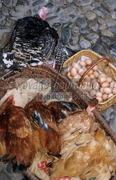 Europe/France/Auvergne/12/Aveyron/Villefranche-de-Rouergue: Volailles sur le marché de la place Notre-Dame