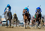 OZONE PARK, NY - APRIL 07: on Wood Memorial Stakes Day at Aqueduct Race Track on April 7, 2018 in Ozone Park, New York. (Photo by Scott Serio/Eclipse Sportswire/Getty Images)