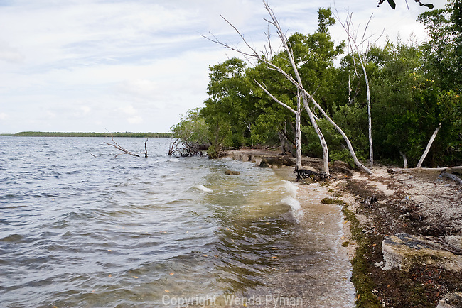 Crocodile Lake Wildlife Refuge covers a significant portion of Key Largo.