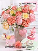 Alfredo, FLOWERS, BLUMEN, FLORES, photos+++++,BRTOLMN56234,#f#, EVERYDAY ,rose,roses