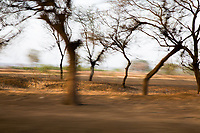 Trees blur as viewed from a passing train near the city of Latur, affected by severe drought.