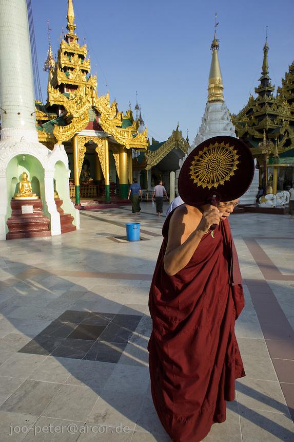 monk in Shwedagon pagoda complex, Yangon, Myanmar, 2011
