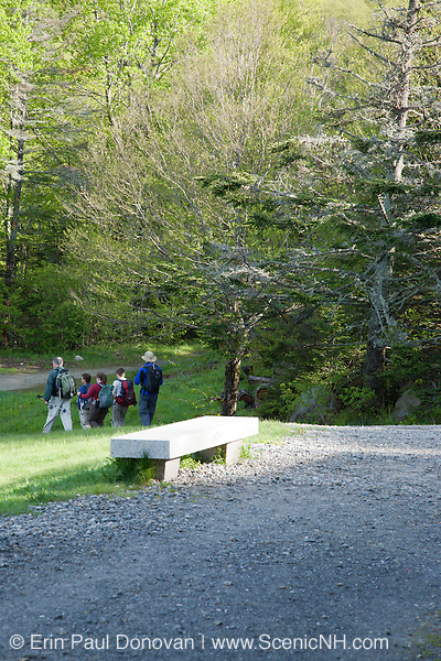 A group of hikers at Moosilauke Ravine Lodge heading to Gorge Brook Trail during the summer months. Located in the White Mountains, New Hampshire USA