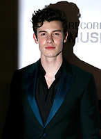 LOS ANGELES, CA - FEBRUARY 08: Shawn Mendes at the MusiCares Person of the Year Tribute held at Los Angeles Convention Center, West Hall on February 8, 2019 in Los Angeles, California. Photo: imageSPACE<br /> CAP/MPI/DC<br /> &copy;DC/MPI/Capital Pictures<br /> CAP/MPI/DC<br /> &copy;DC/MPI/Capital Pictures<br /> CAP/MPI/IS<br /> &copy;IS/MPI/Capital Pictures