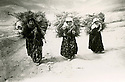 Iran 1958  Women carrying woods in the village of Ghassemlou Iran 1958 Femmes portant du bois pres de Ghassemlou