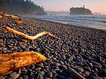 Olympic National Park, WA   <br /> Evening light on driftwood & dark stones of Ruby Beach