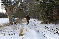 A brisk winter ride in the snow near the village of Spaunton, the North Yorkshire Moors, England.