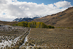 Idaho, Central,, Mackay. A view of the White Knob Mountains in autumn.
