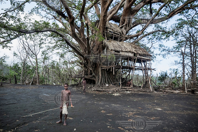 Ruben from Yakel village on Tanna Island stands in front of a traditional tree house. Yakel village is known for its preservation of traditional lifestyle and culture and is a tourist attraction. The village was damaged by Cyclone Pam and locals lost their homes and gardens. Since much of the tourist trade stopped after the Cyclone hit the country, Yakel people also lost their income from foreign visitors.<br /> Cyclone Pam, a tropical storm that hit the Pacific island nation of Vanuatu on 13 March 2015, is considered one of the worst natural disasters to affect the country. Over 15 people died in the storm and winds up to 165 mph (270 km/h) caused widespread damage to houses and infrastructure.