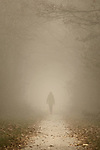 Silhouette of a woman walking away on a small treelined footpath on a foggy day