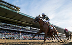 June 8, 2019 : #7, Sir Winston, ridden by jockey Joel Rosario, wins the 151st Belmont Stakes on Belmont Stakes Festival Saturday at Belmont Park in Elmont, New York. Alex Evers/Eclipse Sportswire/CSM