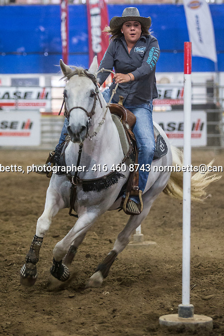 New Tecumseth- Mayor's Charity Rodeo in Alliston, Ontario, Canada, Saturday and Sunday Sept 9th and 10th<br /> photos by Norm Betts<br /> <br /> Sponsored by Mayor Rick Milne, to raise scholarship funds for local students.<br /> <br /> normbetts@canadianphotographer.com<br /> &copy;2017, Norm Betts, photographer<br /> 416 460 8743