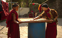Buddhist monks playing carrom in Sikkim India