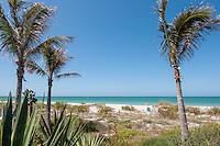 Gulf of Mexico, Captiva Island, Florida, USA... photo Debi Pittman Wilkey.