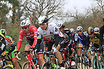 The peloton including Edvald Boasson Hagen (NOR) Team Dimension Data on gravel sector 2 Bagnaia during the 2017 Strade Bianche running 175km from Siena to Siena, Tuscany, Italy 4th March 2017.<br /> Picture: Eoin Clarke | Newsfile<br /> <br /> <br /> All photos usage must carry mandatory copyright credit (&copy; Newsfile | Eoin Clarke)