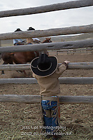 figuring it out Cowboys working and playing. Cowboy Cowboy Photo Cowboy, Cowboy and Cowgirl photographs of western ranches working with horses and cattle by western cowboy photographer Jess Lee. Photographing ranches big and small in Wyoming,Montana,Idaho,Oregon,Colorado,Nevada,Arizona,Utah,New Mexico.