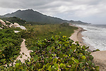 Trail along the coast in Tayrona National Park near Santa Marta, Colombia.  The park is one of the most popular tourist destinations on Colombia's Caribbean coast.