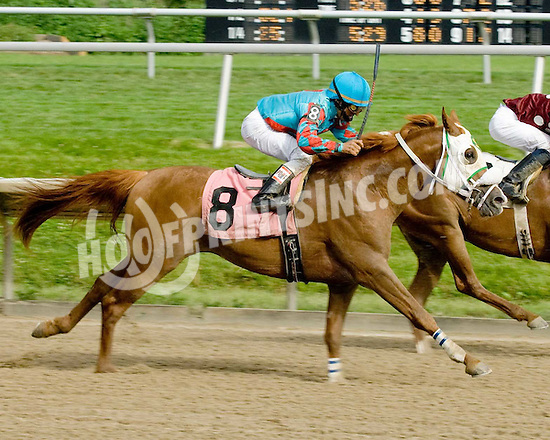 Monarkos CS winning at Delaware Park on 6/22/09