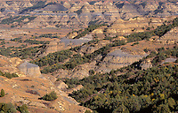 NDTR_131 - USA, North Dakota, Theodore Roosevelt National Park, View from Bentonitic Clay Overlook with grassland, forest and eroded formations with gray colored exposed bentonite clay.