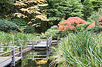 Bridge on Koi Pond and Iris Garden.  The Japanese Garden in Portland is a 5.5 acre respit.  Said to be one of the most authentic Japanese Garden's outside of Japan, the rolling terrain and water features symbolize both peace and strength.