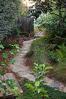 Permeable path with stepping stones on gravel through side yard with California native plants, Heath-Delaney garden